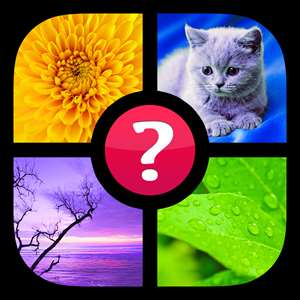 Guess the Word! ~ Photo Quiz with Pics and Words Hack