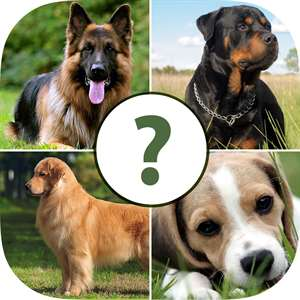 Pups Pet Trivia – The Dog Lovers Quiz Pro Hack