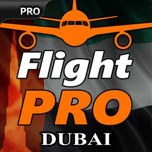 Pro Flight Simulator Dubai Hack