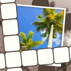 Picture Perfect Crossword Hack