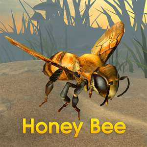 Honey Bee Simulator Hack